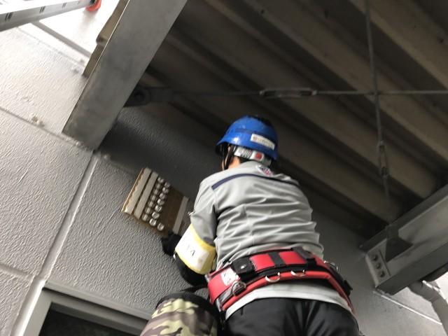 事務棟と倉庫の渡り廊下に鳩の飛来がありどうにかしたい・・栃木県下野市