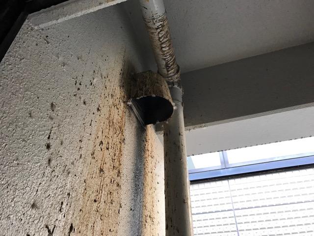 ビルの1階から6階の吹抜け部に鳩の飛来や巣、糞害があるのでどうにかしたい・・東京都千代田区半蔵門①