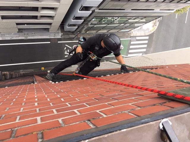 東京都中央区防鳥ネット施工